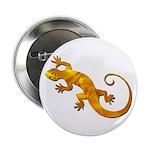 Golden Yellow Gecko 2.25