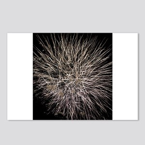 Fireworks 1 Postcards (Package of 8)