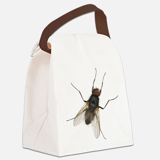 Large Housefly Canvas Lunch Bag
