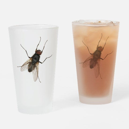 Large Housefly Drinking Glass