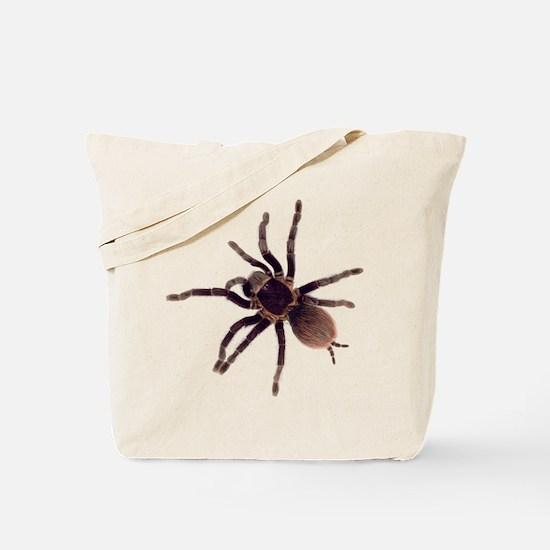 Hairy Brown Tarantula Tote Bag