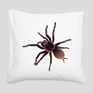 Hairy Brown Tarantula Square Canvas Pillow