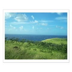 Maui Meadow Trees Posters