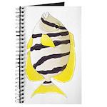Convict Surgeonfish Journal