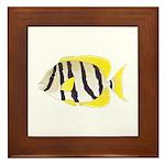 Convict Surgeonfish Framed Tile