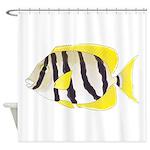 Convict Surgeonfish Shower Curtain