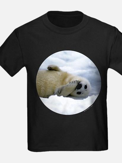 Harp Seal T