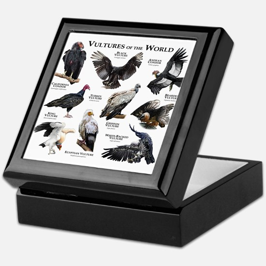 Vultures of the World Keepsake Box
