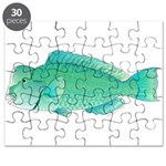 Green Humphead Bumphead Parrotfish Puzzle