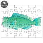 Green Humphead Bumphead Parrotfish Puzzle