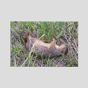Dead Squirrel Rectangle Magnet