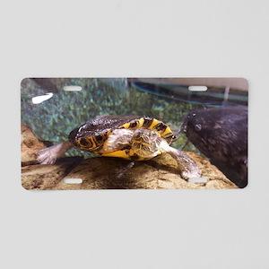 Red-eared Slider Turtle Aluminum License Plate