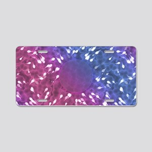 Little Swimmers - Blue/Pink Aluminum License Plate