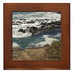 Seal Rock Framed Tile