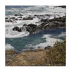 Seal Rock Tile Coaster