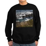 Seal Rock Sweatshirt (dark)