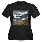 Seal Rock Women's Plus Size V-Neck Dark T-Shirt