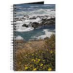 Seal Rock Journal