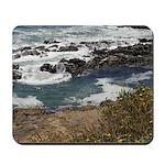 Seal Rock Mousepad