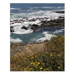 Seal Rock Small Poster
