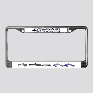 Swim in Dolphins Pattern B License Plate Frame