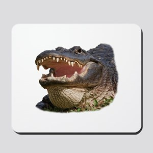 alligator with teeth showing Mousepad