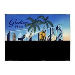 Vintage Florida Greetings Postcard 5'x7'ar