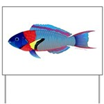 Saddle Wrasse Yard Sign