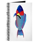 Saddle Wrasse Journal