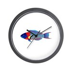 Saddle Wrasse Wall Clock