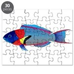 Saddle Wrasse Puzzle