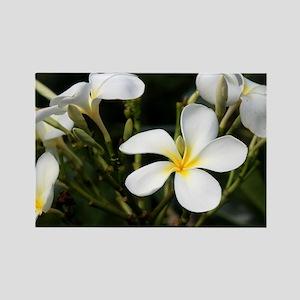 Hawaiian Flower Rectangle Magnet