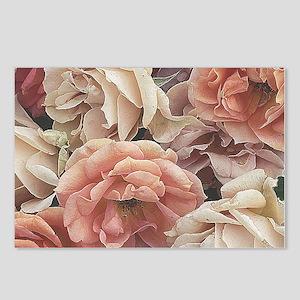 great garden roses, vintage look Postcards (Packag