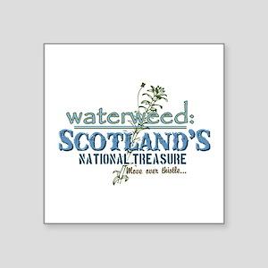 "Waterweed Square Sticker 3"" x 3"""