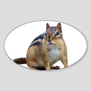 Chipmunk Sticker (Oval)