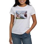 Creation / Cavalier Women's T-Shirt