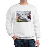 Creation / Cavalier Sweatshirt