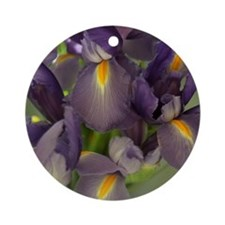 Ballet Purple Iris Flower Photo Ornament (Round)