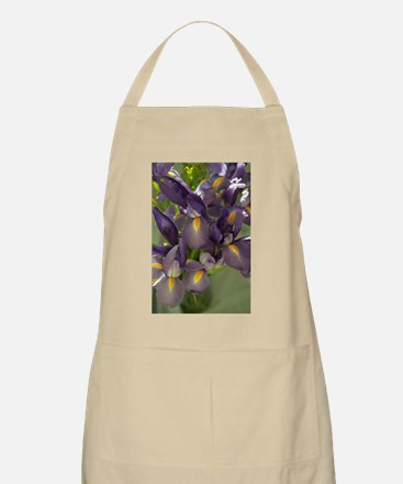 Ballet Purple Iris Flower Photo Apron
