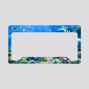 Sea Life License Plate Holder