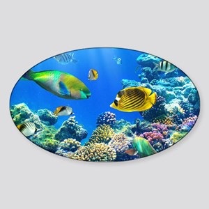 Sea Life Sticker