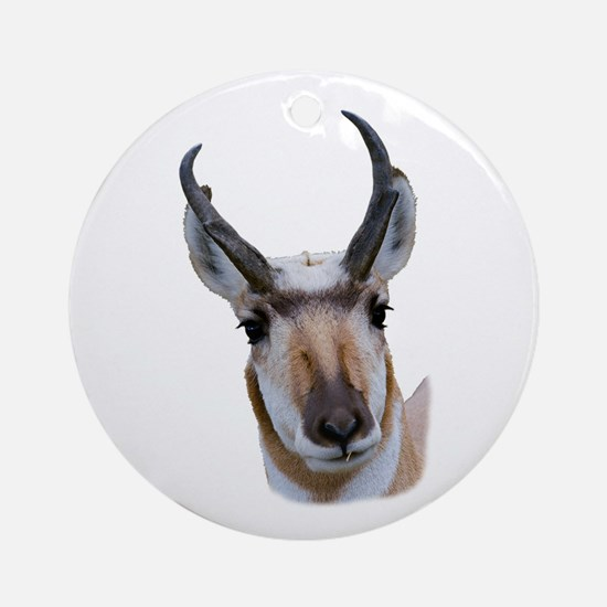 Pronghorn Round Ornament