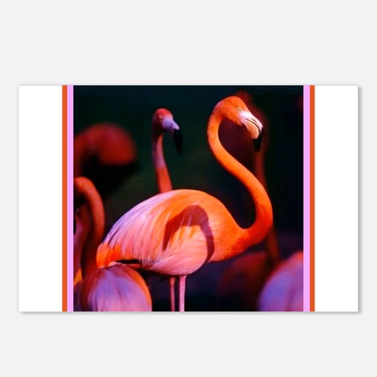 Pink Flamingo Postcards (Package of 8)