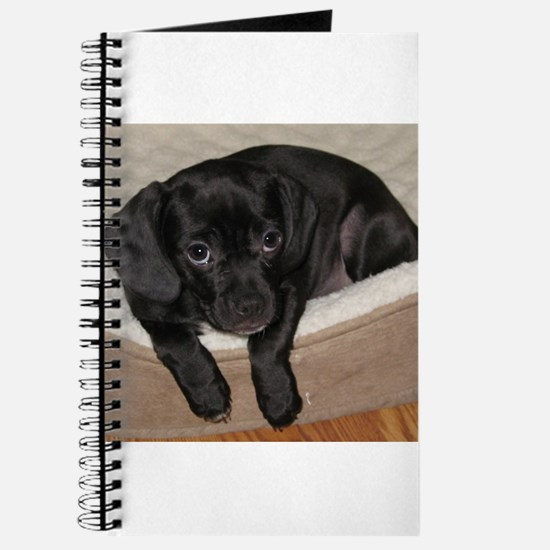 Jewel the Puggle puppy Journal