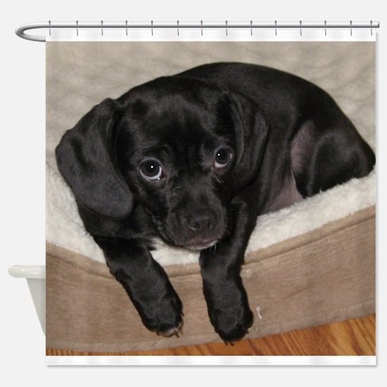 Jewel the Puggle puppy Shower Curtain