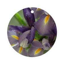 Cascade Purple Iris Flower Photo Ornament (Round)
