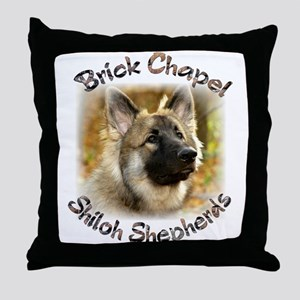 Brick Chapel Shilohs Throw Pillow