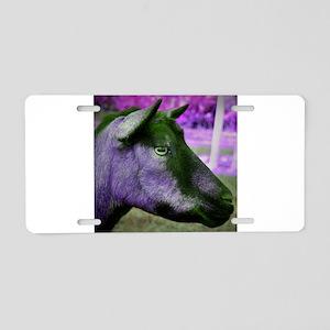 oberhasli doe head close up green magenta Aluminum