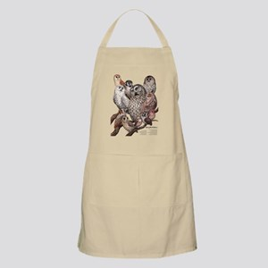 Owls of the Northeast Apron
