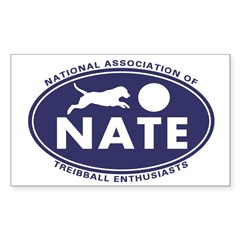 NATE logo Stickers